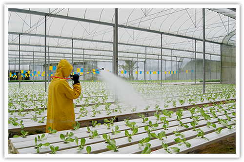 pesticide.png